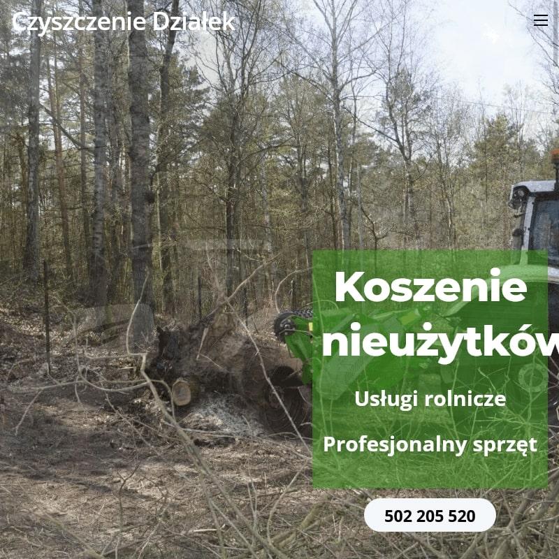 Wycinka drzew i krzewów na terenie Warszawy
